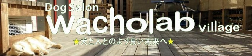 Wacholab-village & Cafe